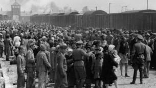 'اختيار' اليهود المجريون في مايو 1944 في بيركناو، حيث قُتل مليون يهودي خلال المحرقة (Wikimedia Commons)