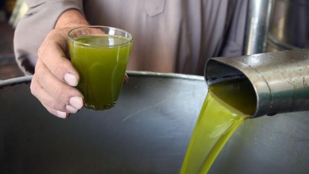 يتم سحق الزيتون لصناعة زيت الزيتون في قرية بيت علا بالقرب من الخليل في الضفة الغربية، في 24 أكتوبر / تشرين الأول 2010. (Najeh Hashlamoun/Flash90)