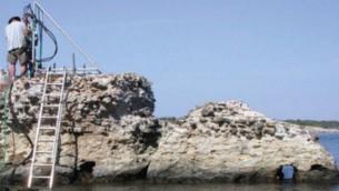 عالم يجمع عينات إسمنتية من  رصيف 'بورتوس كوسانوس' الذي يعود إلى العصر الروماني في أوربيتيلو، إيطاليا. (JP Oleson)