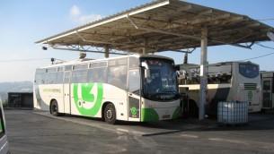 صورة توضيحية: حافلة تابعة لشركة افيكيم (CC BY-SA, by Ori, Wikimedia Commons)