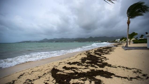 صورة تم التقاطها في 5 سبتمبر، 2017 لشاطئ 'باي ناتل' في مدينة ماريغوت، مع هبوب الرياح قبل وصول اعصار ايرما. (AFP PHOTO / Lionel CHAMOISEAU)