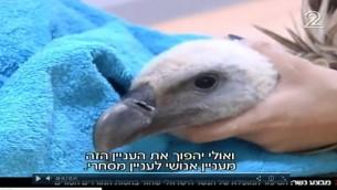 صورة شاشة لنسر اس-98 الذي اعاده قائد كتبية معارضة سوري الى اسرائيل في سبتمبر 2017 (Channel 2/Screenshot)