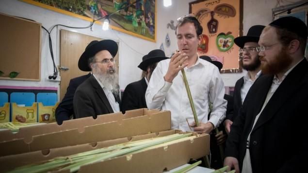 رجال يهود متشددون يفحصون سعف نخيل في حي ميئا شعاريم اليهودي المتشدد في القدس، 1 اكتوبر 2017 (Yonatan Sindel/Flash90)