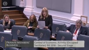 السناتور الأيرلندية فرانسيس بلاك تتحدث قبل تصويت مجلس الشيوخ على مشروع قانون مراقبة الأنشطة الاقتصادية (الأراضي المحتلة) 2018، 30 يناير 2018 (لقطة شاشة www.oireachtas.ie)