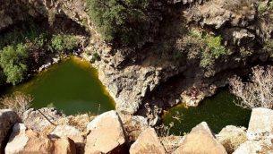 أشخاص يسبحون في بركتين من المياه العذبة تقعان تحت شلال كبير في نهر زفيتان. (Phil Sussman/Flash90)