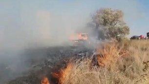 حريق في غابة بئيري ناجم عن بالون حارق تم إطلاقه من قطاع غزة في 18 أغسطس، 2018. (Screen capture: Twitter video)