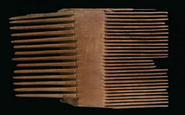 مشط القمل من متسادا، الفترة الرومانية.(Clara Amit/Israel Antiquities Authority)
