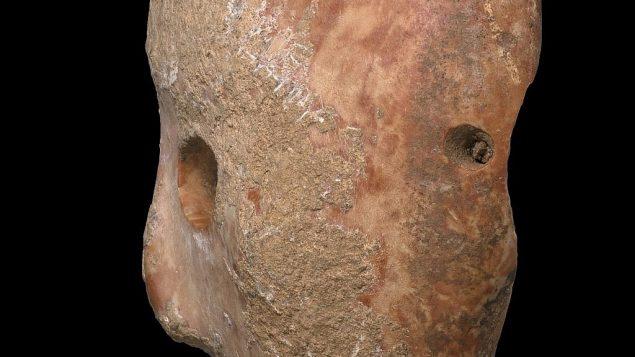 صورة جانبية لقناع حجري عمره 9 آلاف عام تم اكتشافه في منطقة جبل الخليل في جموب الضفة الغربية في أوائل 2018. (Clara Amit, Israel Antiquities Authority)