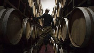 في هذه الصورة التي تم التقاطها يوم الثلاثاء، 11 فبراير، 2014، يقوم عمال إسرائيليون بفحص براميل في مصنع للنبيذ في مستوطنة بساغوت في الضفة الغربية. (AP/Dan Balilty)