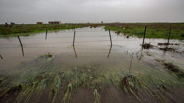 فيضان في نهر في اعقاب امطار غزيرة في مرتفعات الجولان، 14 يناير 2019 (Maor Kinsbursky/Flash90)