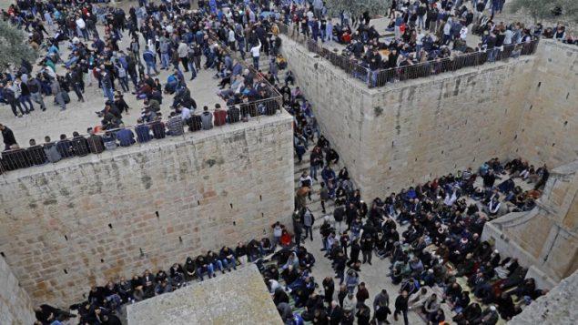 متظاهرون فلسطينيون يتجمعون قبل صلاة الجمعة في منطقة باب الرحمة في الحرم القدسي، 22 فبراير 2019 (AHMAD GHARABLI / AFP)