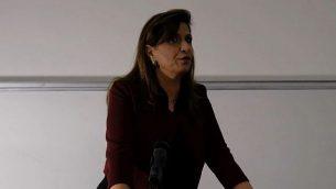 لقطة شاشة من مقطع فيديو لبروفسور نادرة شلهوب كيفوركيان، أستاذة العمل الاجتماعي والقانون في الجامعة العبرية في القدس، خلال عرض توضيحي. (YouTube)