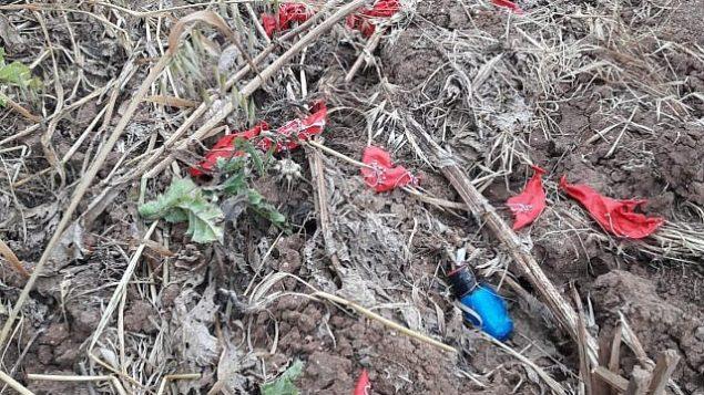 جسم مشبوه تم ربطه ببالونات أطلقت من قطاع غزة، هبط في حقل في جنوب إسرائيل، 24 مارس، 2019. شؤ(Sha'ar Hanegev Regional Council)