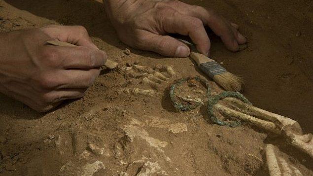 عمليات تنقيب أثرية في مقبرة فلستينية في أشكلون.   (Melissa Aja/Courtesy Leon Levy Expedition to Ashkelon)