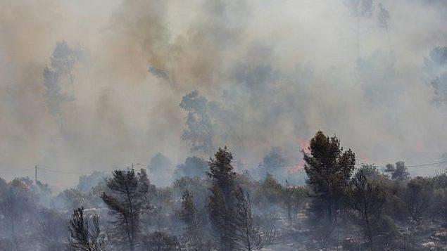 حريق بالقرب من موشاف اديريت، 17 يوليو 2019 (Noam Revkin Fenton/Flash90)