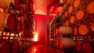 براميل نبيذ في 'مصنع نبيذ بساغوت'، الذي يقع في مستوطنة تحمل نفس الاسم على تلال وسط الضفة الغربية.  (Psagot Winery/JTA)