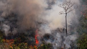 صورة جوية تظهر حريق في غابات الأمازون، شمال البرازيل، 23 اغسطس 2019 (CARL DE SOUZA / AFP)