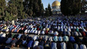 مصلون مسلمون في الحرم القدسي في عيد الاضحى، 12 سبتمبر 2016 (Sliman Khader/Flash90)