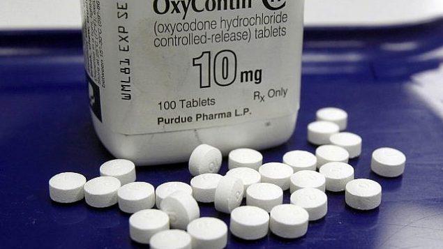 هذه الصورة من الأرشيف من تاريخ 19 فبراير، 2013، تظهر حبوب دواء أوكسيكونتين في صيدلية في مدينة مونتبليير بولاية فيرمونت الأمريكية. (AP Photo/Toby Talbot, File)