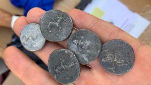 عملات معدنية نادرة من عهد الاسكندر الاكبر، تم كشفها في مقبر كرم ابو سالم في غزة، اكتوبر 2019 (Defense Ministry)