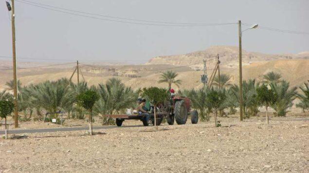 مركبة زراعية في منطقة تسوفار  (الغمر) بمنطقة العربة، على الحدود الإسرائيلية الأردنية، اجرها الأردن لإسرائيل ضمن اتفاقية السلام لعام 1994، فبراير 2007. (Chaver83 / Wikimedia Commons)