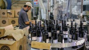 مصنع نبيذ 'غوش عتصيون' في الضفة الغربية، 18 يوليو 2019. (Gershon Elinson / Flash90)