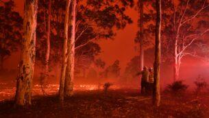 رجال إطفاء يتفقدون المنطقة أثناء مواجهتهم حرائق الغابات في جميع أنحاء مدينة ناورا في ولاية نيو ساوث ويلز الأسترالية، 31 ديسمبر 2019 (SAEED KHAN / AFP)