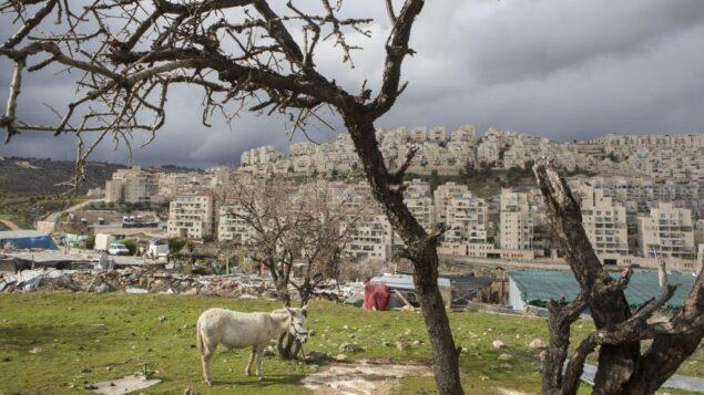 حي هار حوما اليهودي في القدس الشرقية، 15 فبراير 2017 (AP Photo / Dan Balilty)