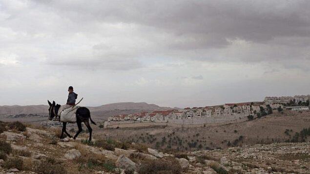 توضيحية: صبي فلسطيني يمتطي حمارا بالقرب من معبر المستوطنات E1، مع مستوطنة معاليه أدوميم في الخلفية. (AP/Sebastian Scheiner)