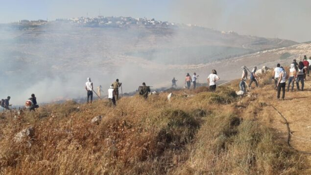مستوطنون من بؤرة جفعات رونين الاستيطانية يعملون على إخماد حريق خارج بؤرتهم، 17 يونيو 2020 (Israel Fire and Rescue Services)