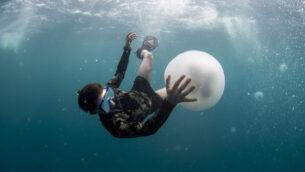 باحثون من كلية ليون تشارني للعلوم البحرية بجامعة حيفا يدرسون سربًا ضخمًا من قناديل البحر ظهر قبالة ساحل حيفا. (Hagai Nativ/University of Haifa)