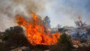 حريق بالقرب من مستوطنة كفار هأورانيم في الضفة الغربية، 9 أكتوبر، 2020. (Yossi Aloni / Flash90)