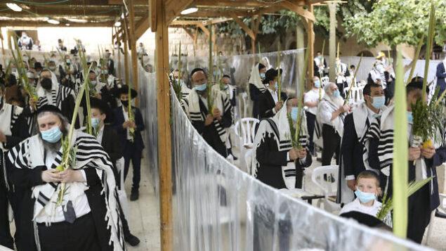 يهود حريديم يصلون في عريشة كنيس 'هاحورفا' في اليوم الأخير من عيد العرش (سوكوت)، في البلدة القديمة بمدينة القدس، 9 أكتوبر، 2020. (Yaakov Lederman/Flash90)