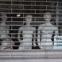دمى في نافذة محل تجاري مغلق في وسط بروكلين في مدينة نيويورك، 8 يناير 2021 (SPENCER PLATT / GETTY IMAGES NORTH AMERICA / AFP)