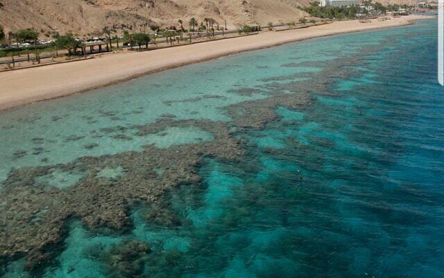 الصورة الرئيسية لشاطئ مرجاني في البحر الأحمر ، إيلات، 29 مايو، 2009. (Anna Kaplan / Flash90)