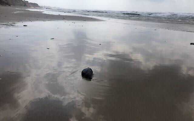كرة جديدة من القطران على الشاطئ في محمية غادور الطبيعية في شمال إسرائيل، 2 مارس، 2021. (Sue Surkes/Times of Israel)