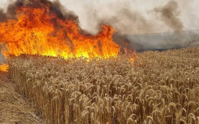 حقل يحترق بالقرب من سديروت في جنوب إسرائيل، 9 مايو 2021 (Sha'ar Hanegev Regional Council)