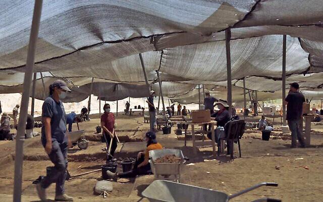 حفريات سلطة الآثار الإسرائيلية في يافني. . (Emil Aladjem/Israel Antiquities Authority)