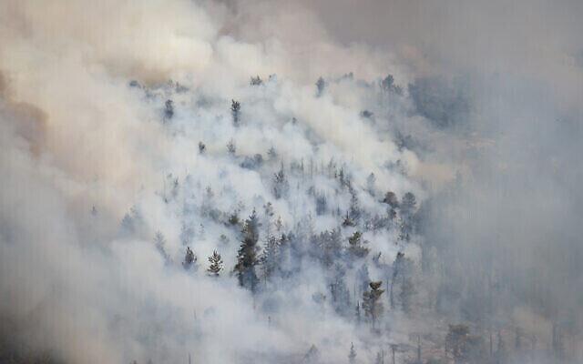 تصاعد الدخان من غابة في منطقة القدس مع انتشار حريق باتجاه الضواحي الجنوبية للمدينة، 16 أغسطس، 2021. (Yonatan Sindel / Flash90)