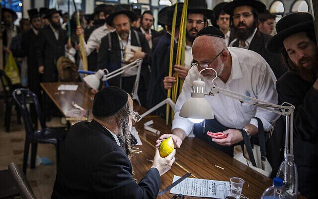رجال حريديم يتفحصون ثمار الأترج في القدس، عشية عيد السوكوت، 19 سبتمبر، 2021. (Olivier Fitoussi/Flash90)