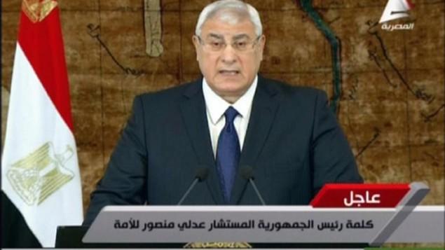الرئيس المصري المؤقت علي منصور في لقطة عن شاشة التلفزيون المصري 26 يناير 2014 (التلفزيون المصري / أ ف ب)