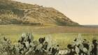 جبال الكرمل كما تظهر من الشمال  ( photo credit: © DEIAHL, Jerusalem)