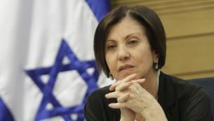 رئيسة حزب ميرتس زهافا غال اون، يونيو 2013 (Miriam Alster/Flash90)