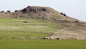 المنطقة التي تخطط الحكومة الإسرائيلية بناء بلدة درزية جديدة فيها في الجليل بالقرب من موقع معركة حطين التاريخية بين صلاح الدين والصليبيين، 28 يناير 2016 (Jack Guez/AFP)