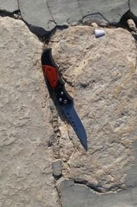 سكين كان بحوزة احد المعتدين الذين نفذوا هجوم اطلاق نار ادى الى اصابة اسرائيليان بإصابات بالغة بالقرب من الحرم القدسي، في القدس القديمة، 14 يوليو 2017 (Israel Police)