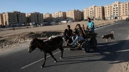 فلسطينيون يركبون عربة التي يجرها حمار أمام وحدات سكنية بتمويل من قطر في خان يونس في جنوب قطاع غزة، 6 يونيو / حزيران 2017. (AFP/Said Khatib)
