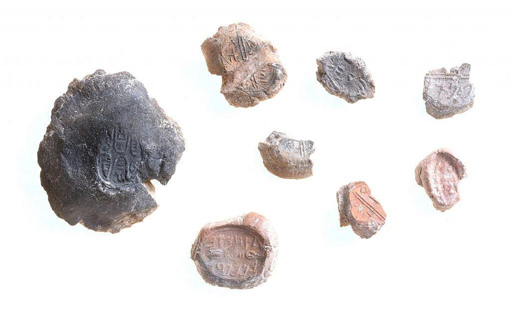 مجموعة من الختم. (Clara Amit, Antiquities Authority)