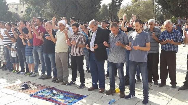 عضو الكنيست احمد طيبي من القائمة العربةي المشتركة يصلي في الحرم القدسي، 27 يوليو 2017 (Ahmed Tibi's office)