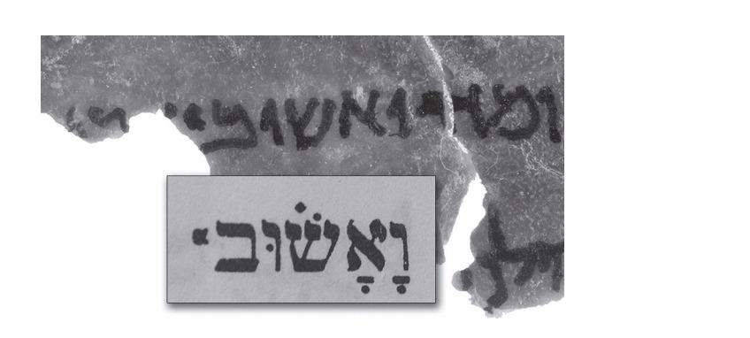 'فيأشوف'، من قطعة نحميا 2:15 من التوراة، مع قطعة من متحف الكتاب المقدس كما تظهر العمل في طبعة عام 1937 من بيبليا هبرايكا. (Image by Bruce and Kenneth Zuckerman and Marilyn J. Lundberg, West Semitic Research, courtesy of Museum of the Bible.)