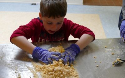 A pasta-making workshop is a hands-on activity Sunday afternoon.